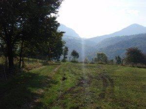 photo-trail-sangerun08-2